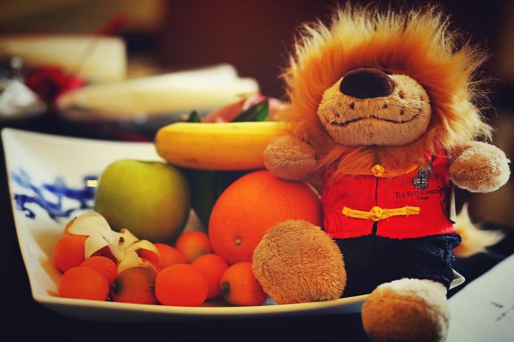 可爱狮子水果标志