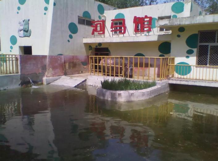 济南动物园门票,济南济南动物园攻略/地址/图片/门票