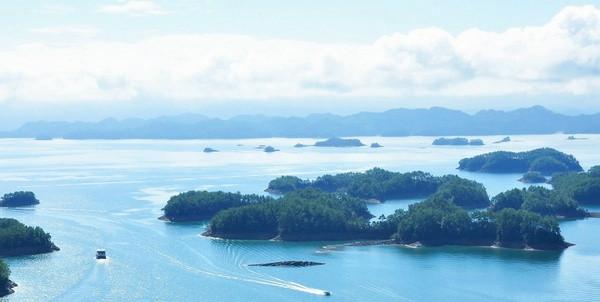 岛屿生态与自然保护