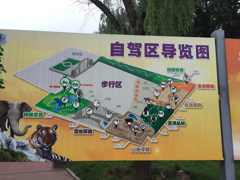 游大兴野生动物园