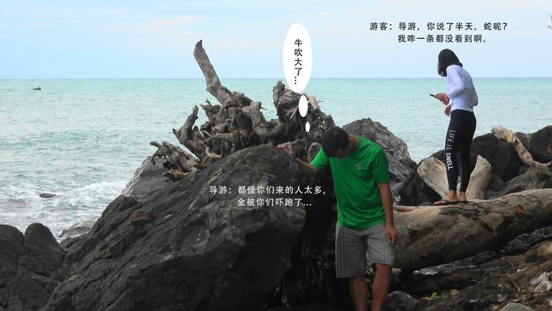 结束白沙滩之行后,第二个目的地是【蛇岛】,这里也是没有被开发过,不