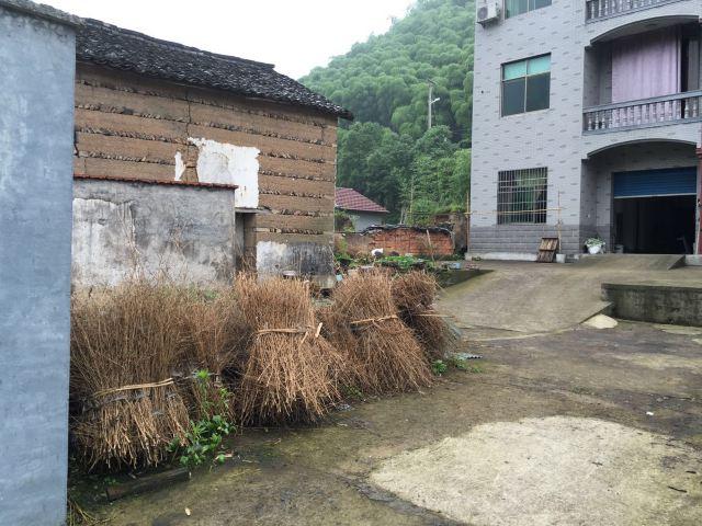 农村民宿一层设计图