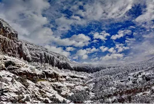 【山花十里,畅游你】光大轿子雪山,春风烂漫-不如v山花攻略61关星图片