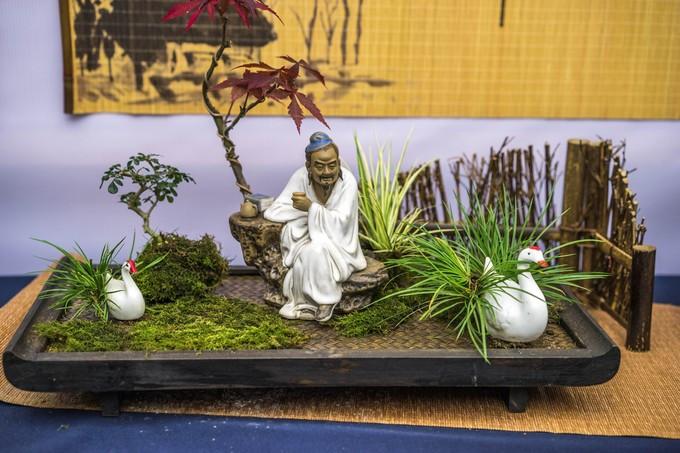 本次展览由上海植物园,中国风景园林学会花卉盆景赏石分会,花木盆景