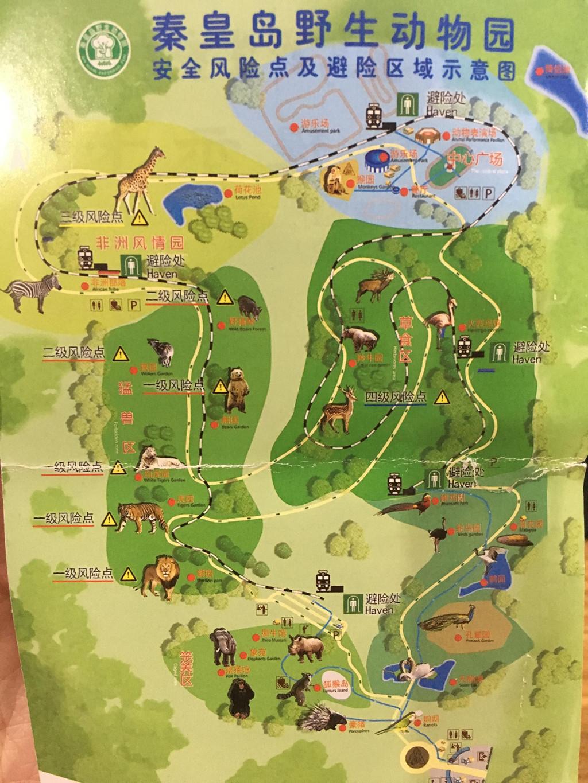 最终选定的秦皇岛野生动物园,天津出发不堵车全程3小时~ 准备了风筝