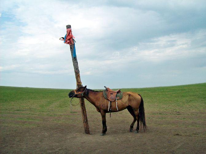 东北黑龙江,内蒙古呼伦贝尔大草原避暑之旅