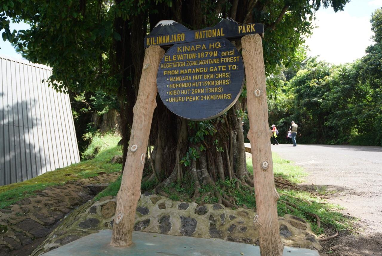 Mount Kilimanjaro  Mount Kilimanjaro   -0