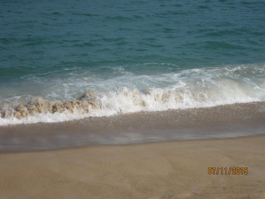 在广东的阳西有几片著名海滩,闸波,沙扒湾,月亮湾,都已是商业化了,只有这次到的阳西河北区的海滩,还有原始的味道。 在广州出发,经过广州大桥,鹤洞大桥,转入广珠西线,在上沈海高速,中午的时分,到了阳西的县城。 阳西的鹅乸煲最有名。