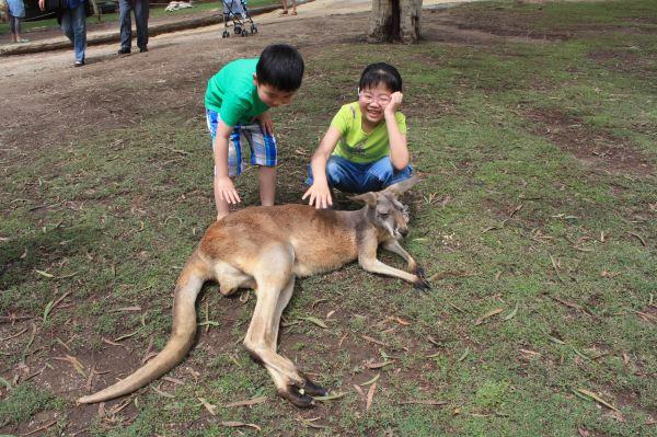 带上父母孩子去旅行 - 春节澳大利亚行军记