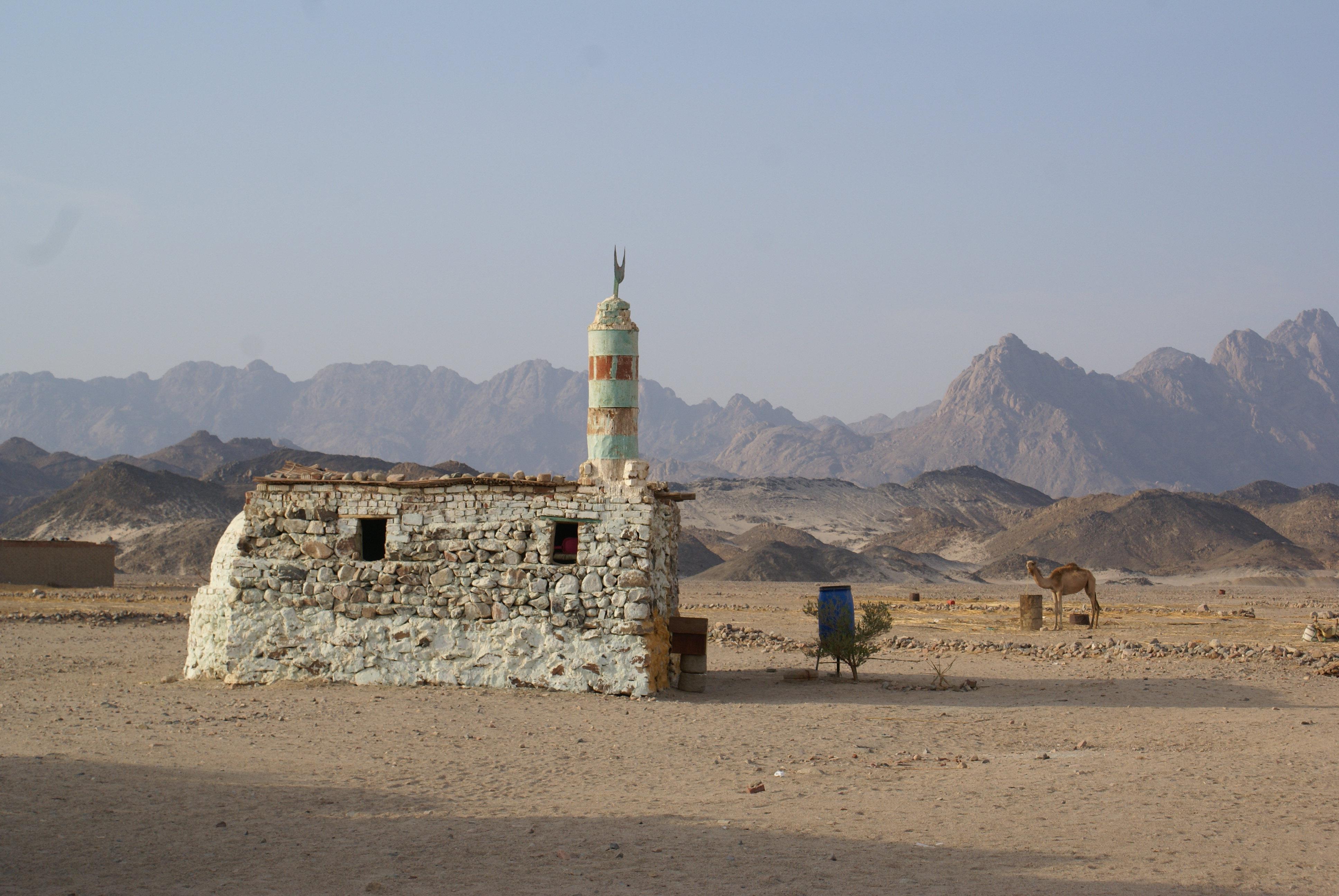 沙漠探险  Desert Safaris   -4