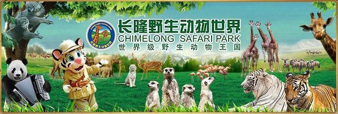 长隆野生动物世界的奇妙新体验 - 广州游记攻略【携程