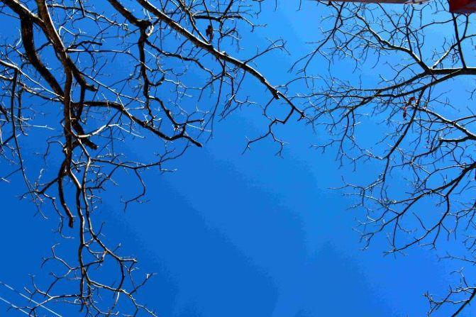 冬日慰籍:重逢,香格里拉 - 香格里拉游记攻略