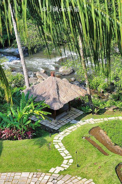 沿着林间小路,在这里开启一场热带丛林冒险之旅