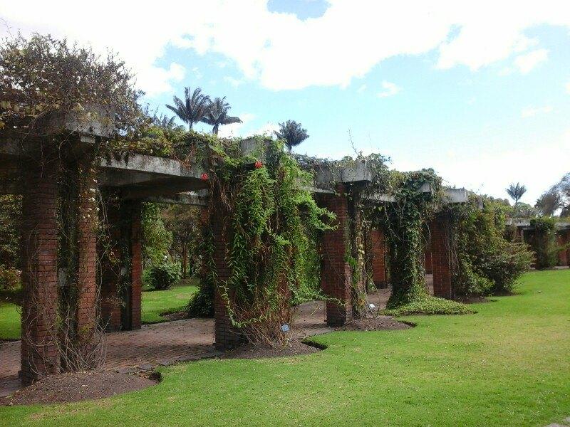Botanico Jose Celestino Mutis植物园  Jardin Botanico Jose Celestino Mutis   -1