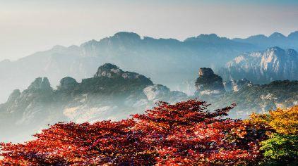 黄山风景区 (6)