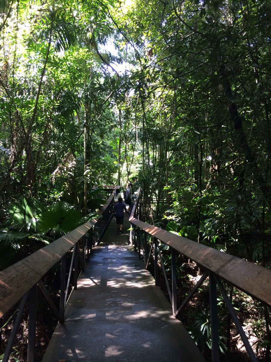 莫尔兹比港自然公园  Port Moresby Nature Park   -0