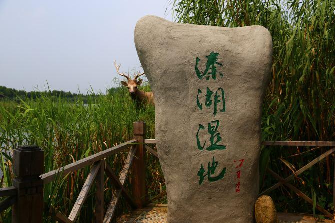 上海到江苏一山四湖(南山竹海、天目湖、瘦