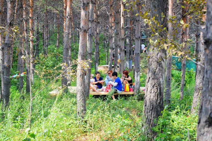走过吊桥的小树林里有两个木板平台,这是景区为游人设置的野餐地方