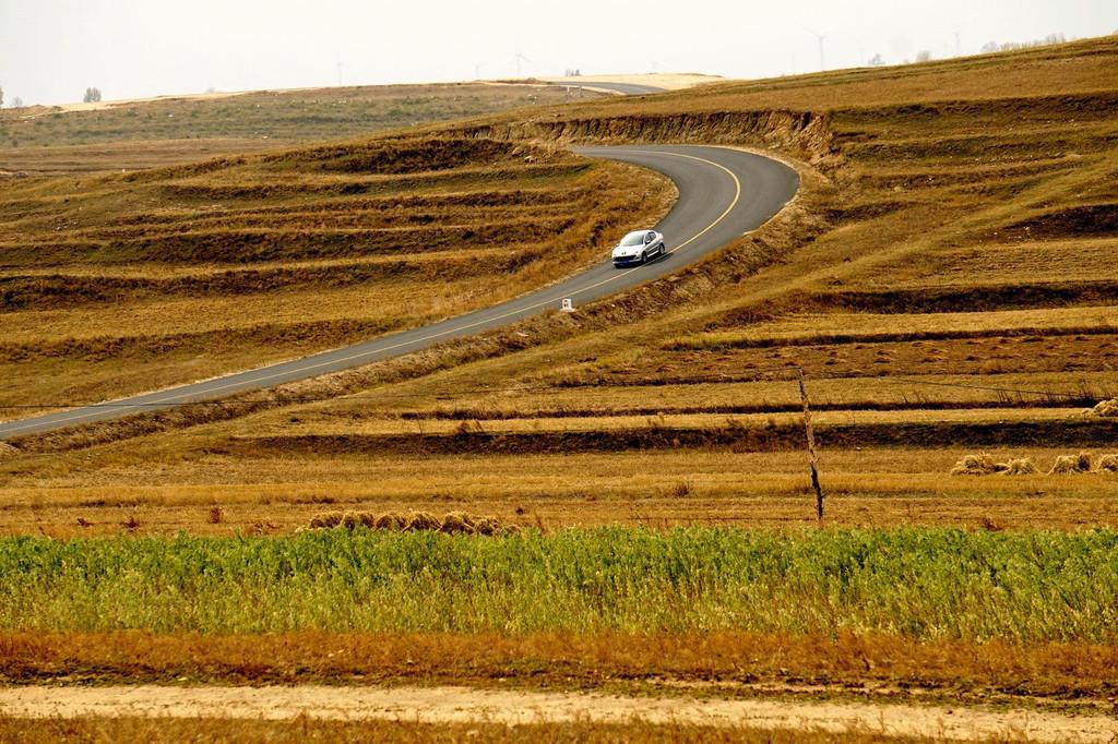 壁纸 草原 成片种植 风景 植物 种植基地 桌面 1024_682