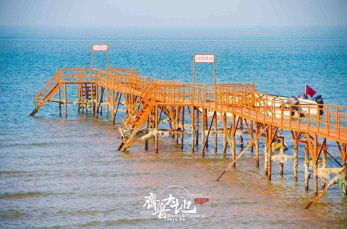 兰州+潍坊+蓬莱+烟台+威海+青岛+日照+大连7日6晚跟