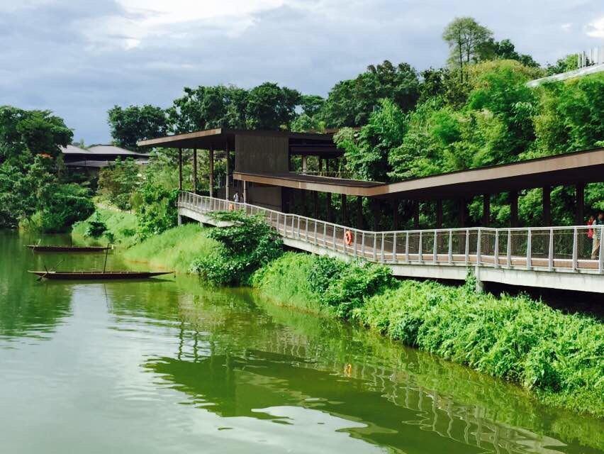 新加坡河川动物园