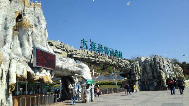 大连森林动物园一日游【循环发车 门票】