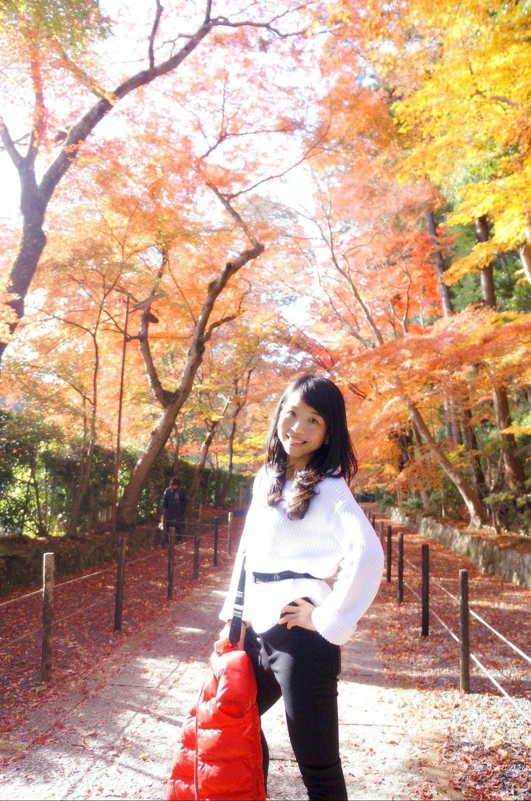京都红叶狩图片
