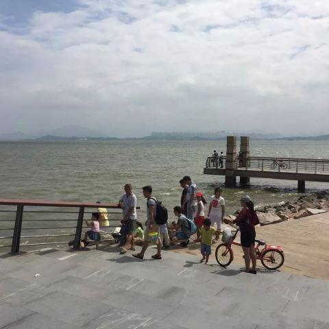 深圳湾公园由已开放的红树林海滨生态公园和建设中的深圳湾滨海休闲带