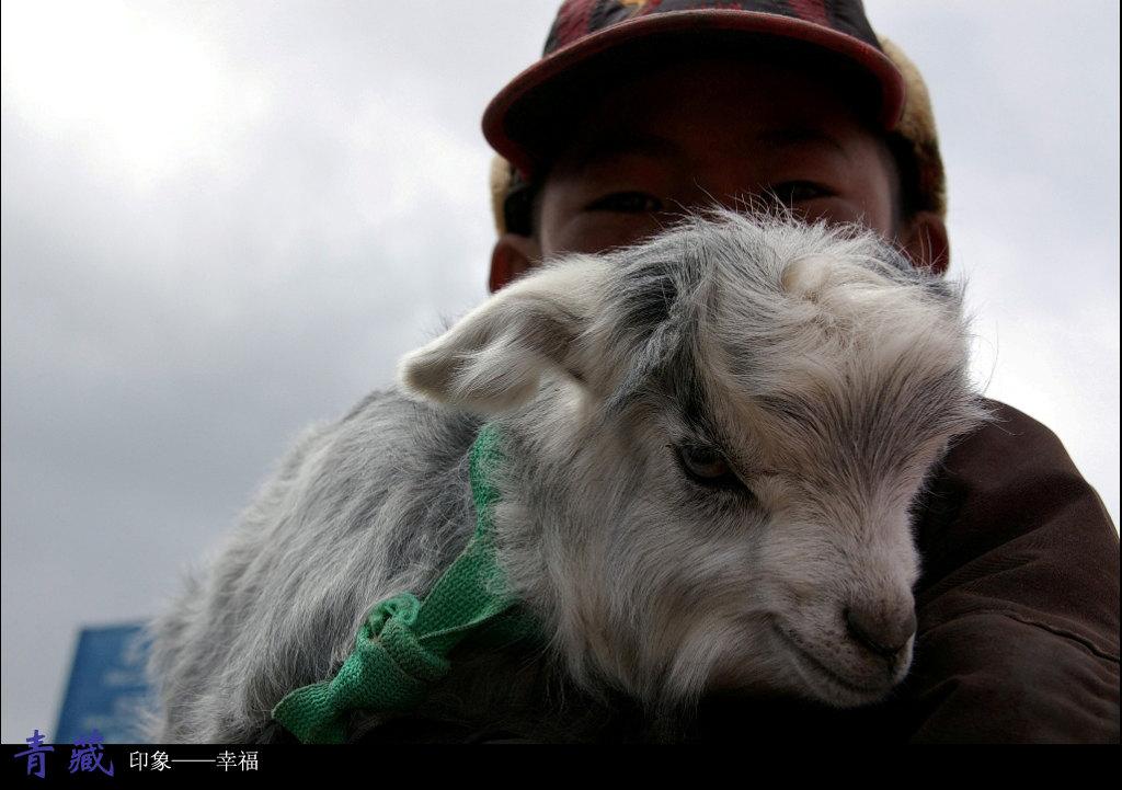 外国小孩抱着动物