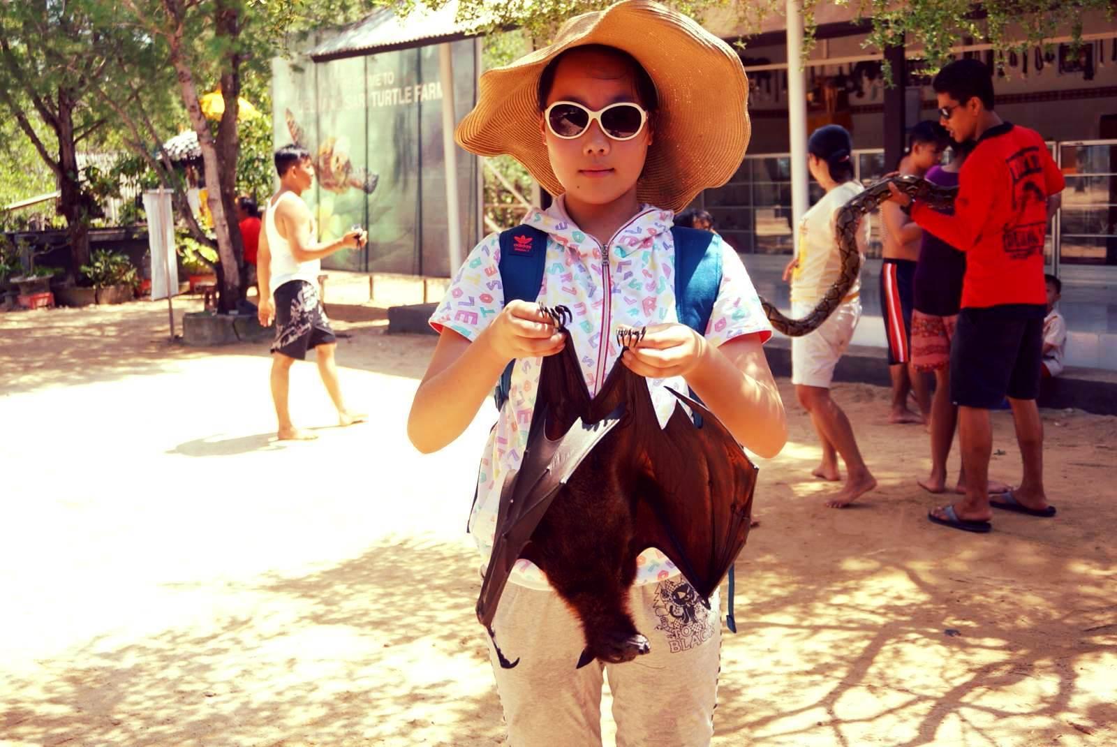 体验夏日的感觉-*-巴厘岛度假随记