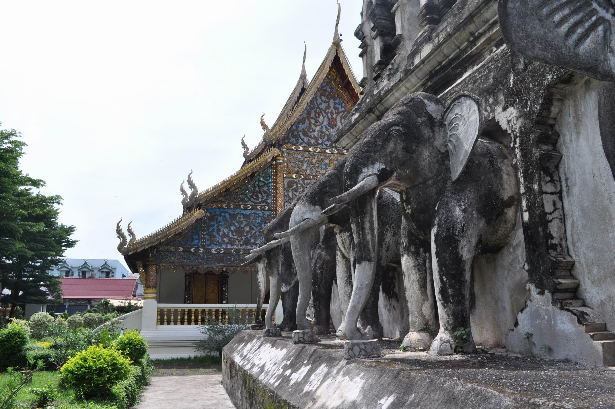 大象佛塔-大象