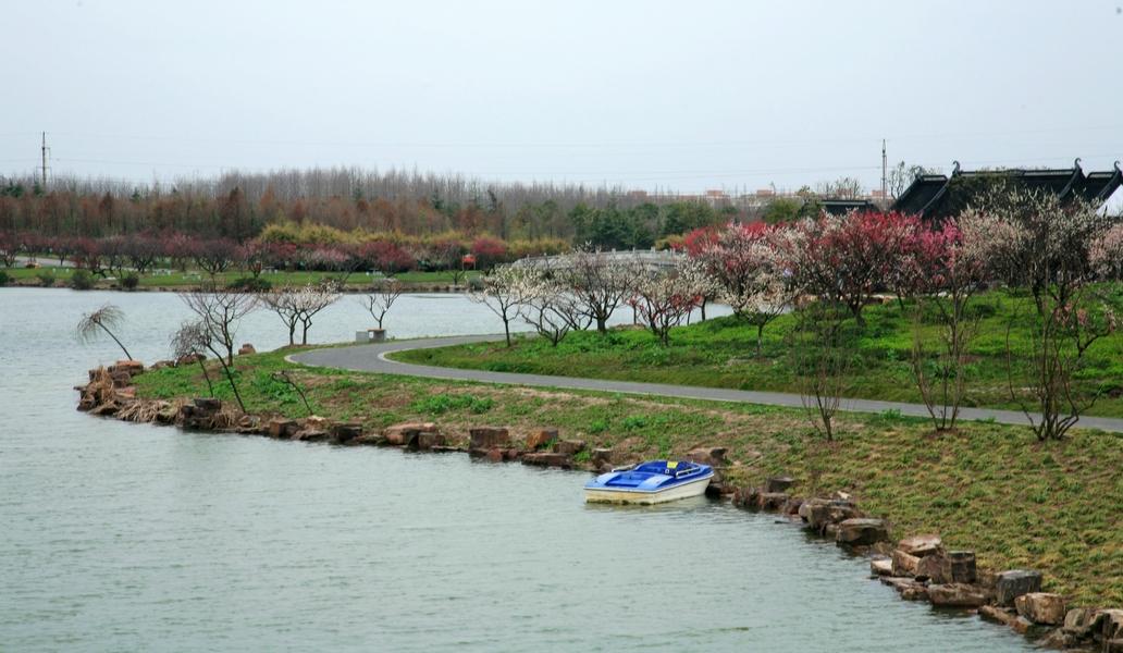 上海海湾国家森林公园位于奉贤区的海湾镇,大概就是以前的五四农场吧