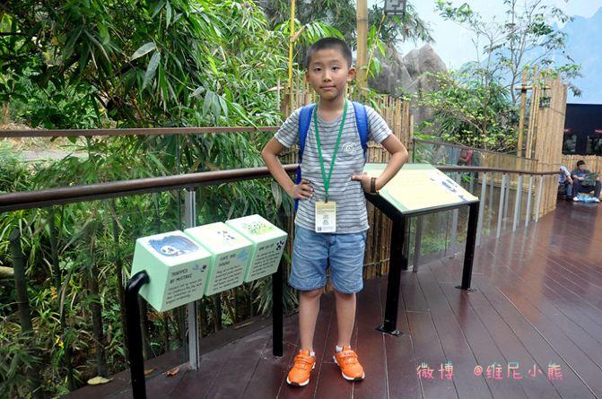 图/文 维尼小熊 动物园,无疑是孩子们最感兴趣的乐园! 我曾带小熊到过许多不同城市的动物园,光广州香江野生动物园都不止去过一次。而印像最深还是到深圳那次,小小年纪的他敢试蠎蛇盘肩,如今回想我都心有余悸。所以此次去新加坡,当看到行程中有动物园时,老实说我并无特别的惊喜,因为听人说新加坡动物园要比广州香江小很多,这让我心里有些打鼓,不过还有人说新加坡动物园胜在动物与人和谐共处的管理方式,这点倒让我们很是期待。 有时不得不承认耳闻不如一见这词,来到这里才知,Singapore Zoo动物园位于新加坡北部的万里