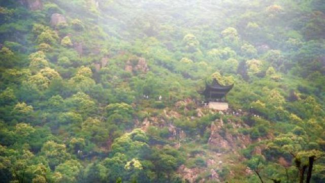 大阳山国家森林公园