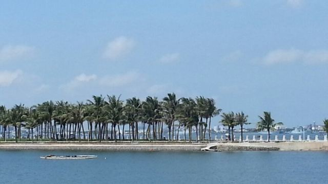 4分 (31条点评) 18 湛江海滨公园位于霞山区东北角海滨,这里有细白的图片