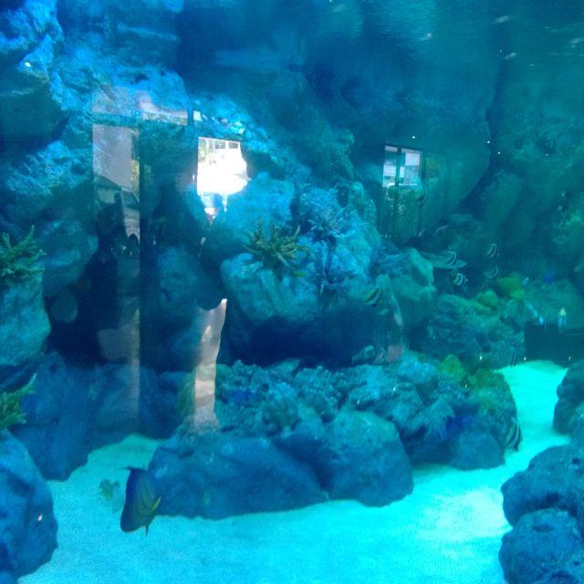 【蝈蝈环游世界】泰国之甲米 普吉岛5天海岛游
