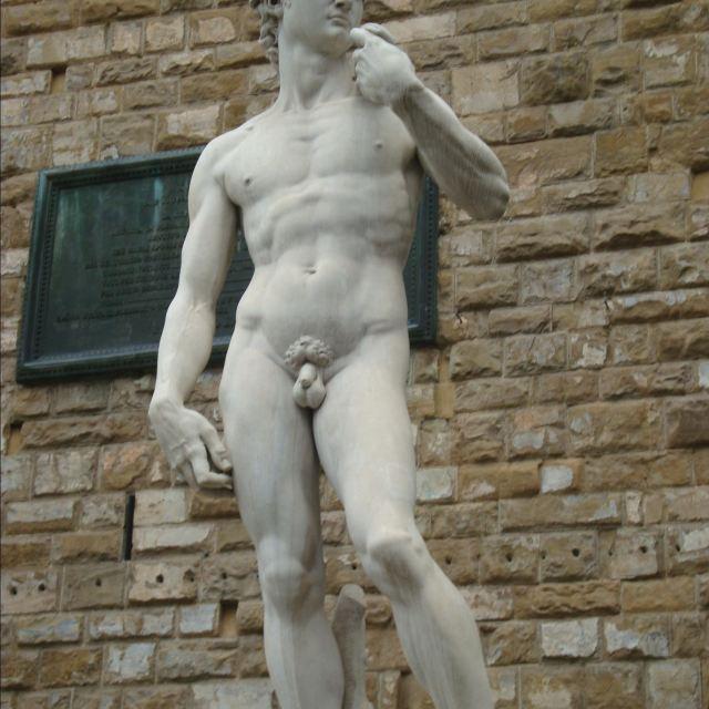 米开朗基罗的著名雕塑作品《大卫》