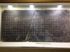 芷江县-湖南-m82****25