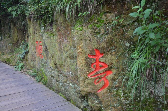 """""""南山竹海""""静湖步道旁的山石上雕刻着""""寿""""字,彰显景区""""寿文化""""的主题"""