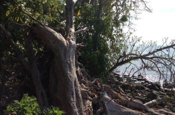 【携程攻略】旅顺蛇岛周边住宿