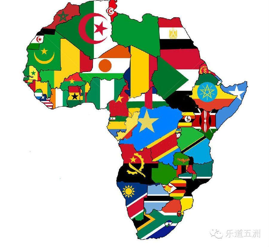 非洲植物矢量图