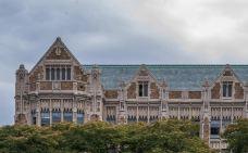 华盛顿大学-西雅图-小小呆60