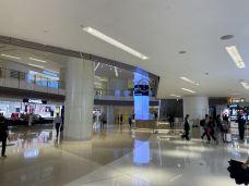 上海国金中心商场-上海-wangdn