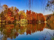 紫金山旅游区-邢台