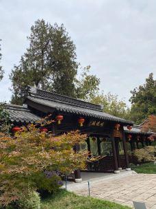 栖霞寺-南京-202****751