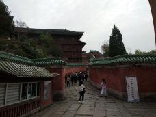 太子坡-武当山-老吴华哥