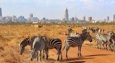 肯尼亚山动物孤儿院-纳纽基-co****ean