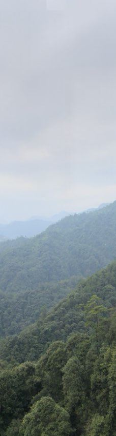 广东第一峰-阳山