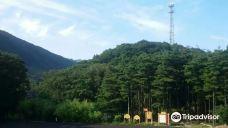 宝天曼生态旅游区-南阳