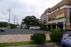 济州旅游发展局指定免税店-济州岛